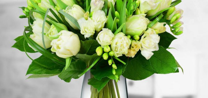 flori-muguri-de-paste